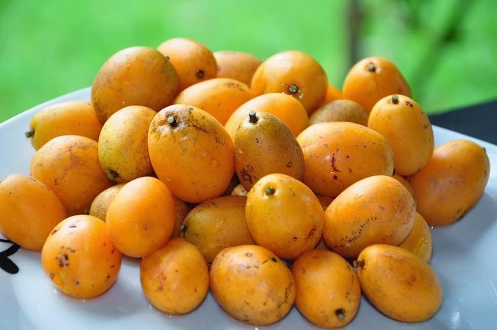 Tipi di frutta in Brasile - Caja-Frutta-del-Brasile